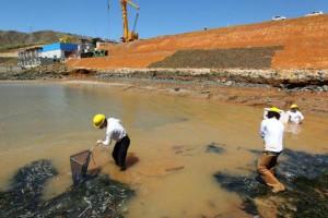 Peixes retidos em poções d'água foram devolvidos ao leito do rio pela equipe de resgate de ictiofauna.